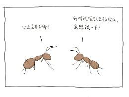 【画中之光】No.16-出埃及