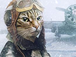 Cat-Pilot