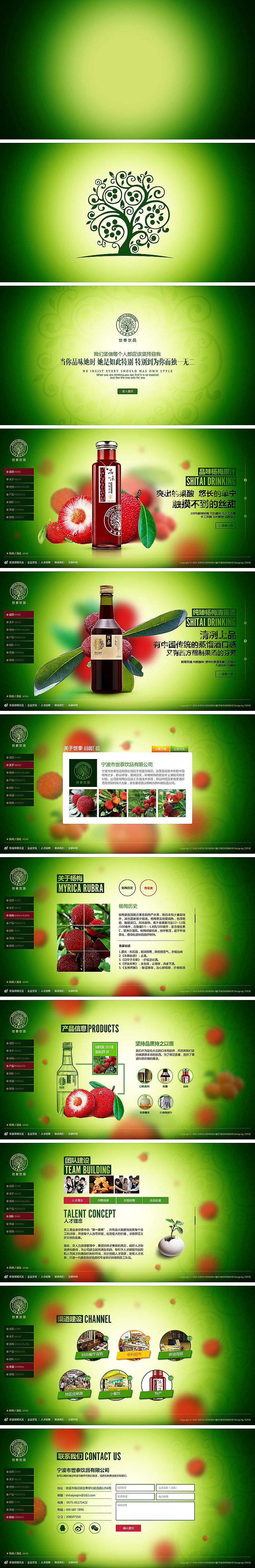 宁波市世泰饮品-网站界面设计001图片