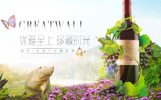 红酒海报banner