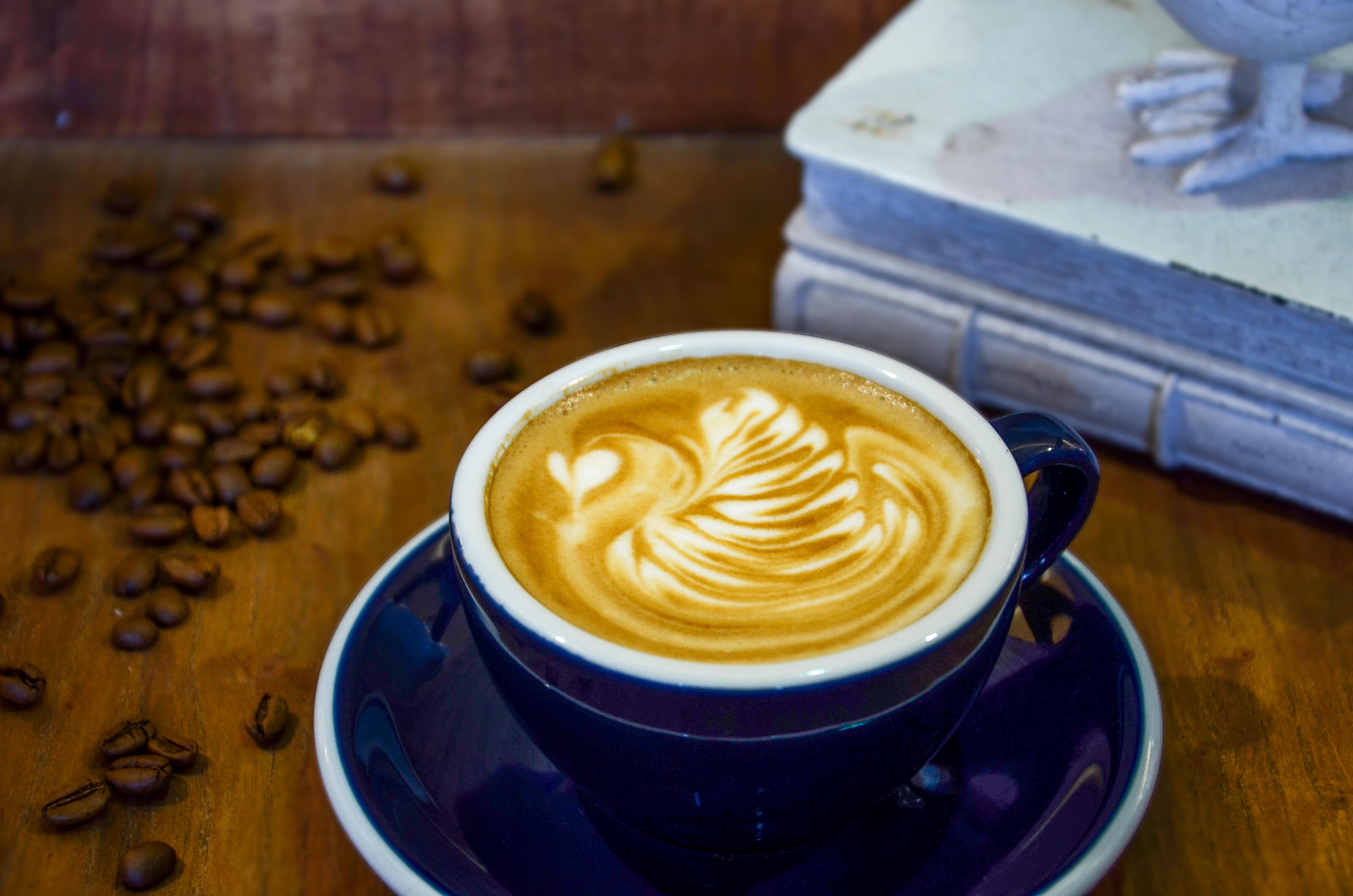 橘普咖啡图片