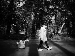 游动物园——黑白篇