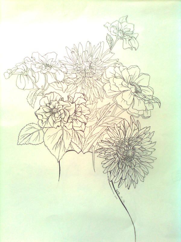 速写花卉/装饰画 钢笔画 纯艺术 瞄了和咪灬