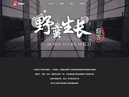 买手大叔APP&企业官网网页设计