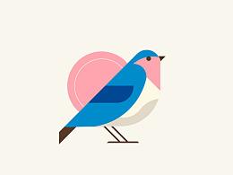 bird(每日一画(追波))