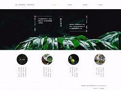 网页设计整理