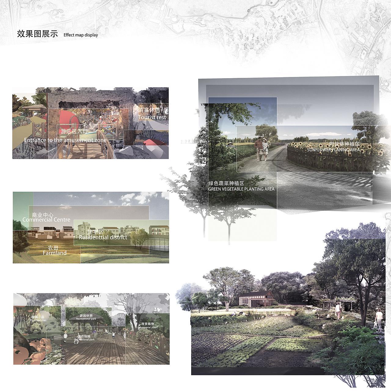 田野留居·农家邻里——基于共享经济的生态农庄设计图片