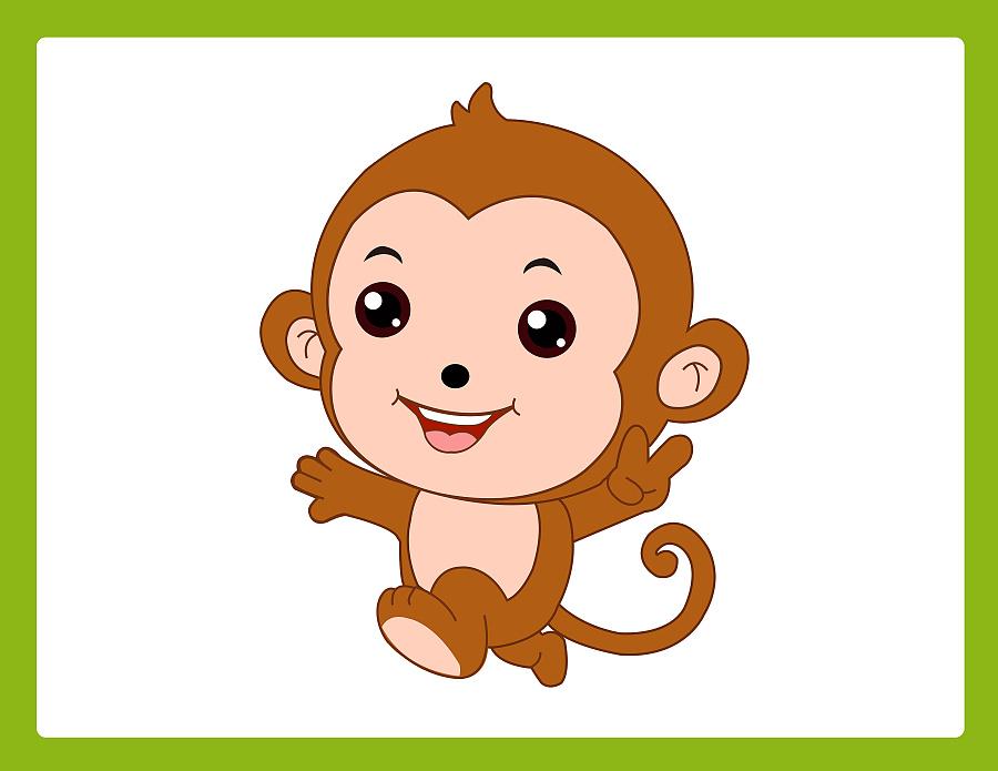 19岁,老猴对小猴说