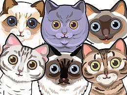 猫家族大图鉴