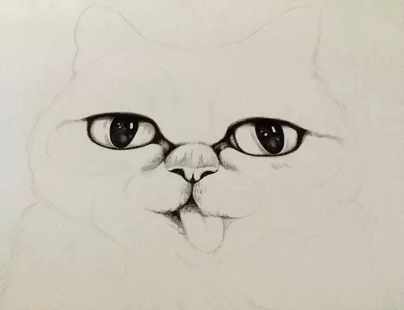 彩铅手绘猫星人绘画过程(原创)