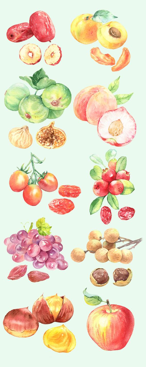 手绘水彩水果坚果