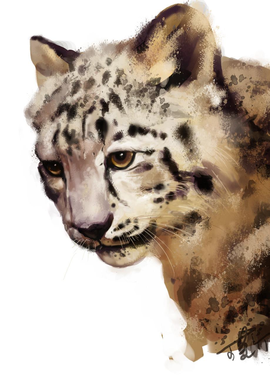 我的动物名片雪豹