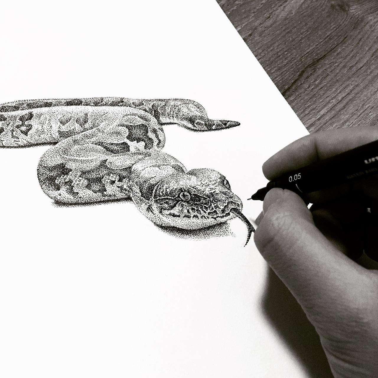 动物手绘集