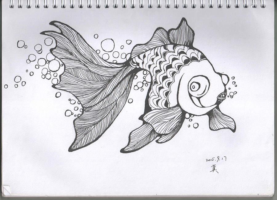 原创作品:金鱼手绘插画