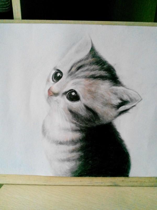 手绘 彩铅 素描