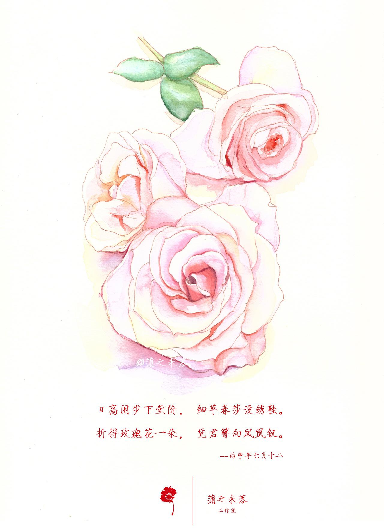水彩手绘--花