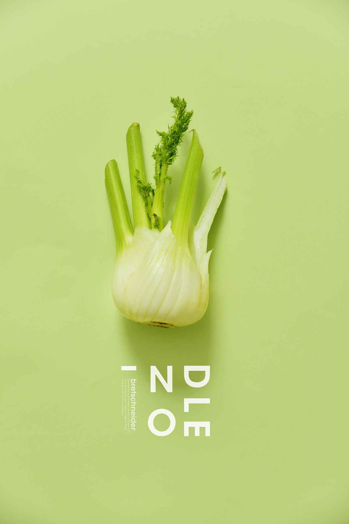 蔬菜蔬果摄影1200x1802