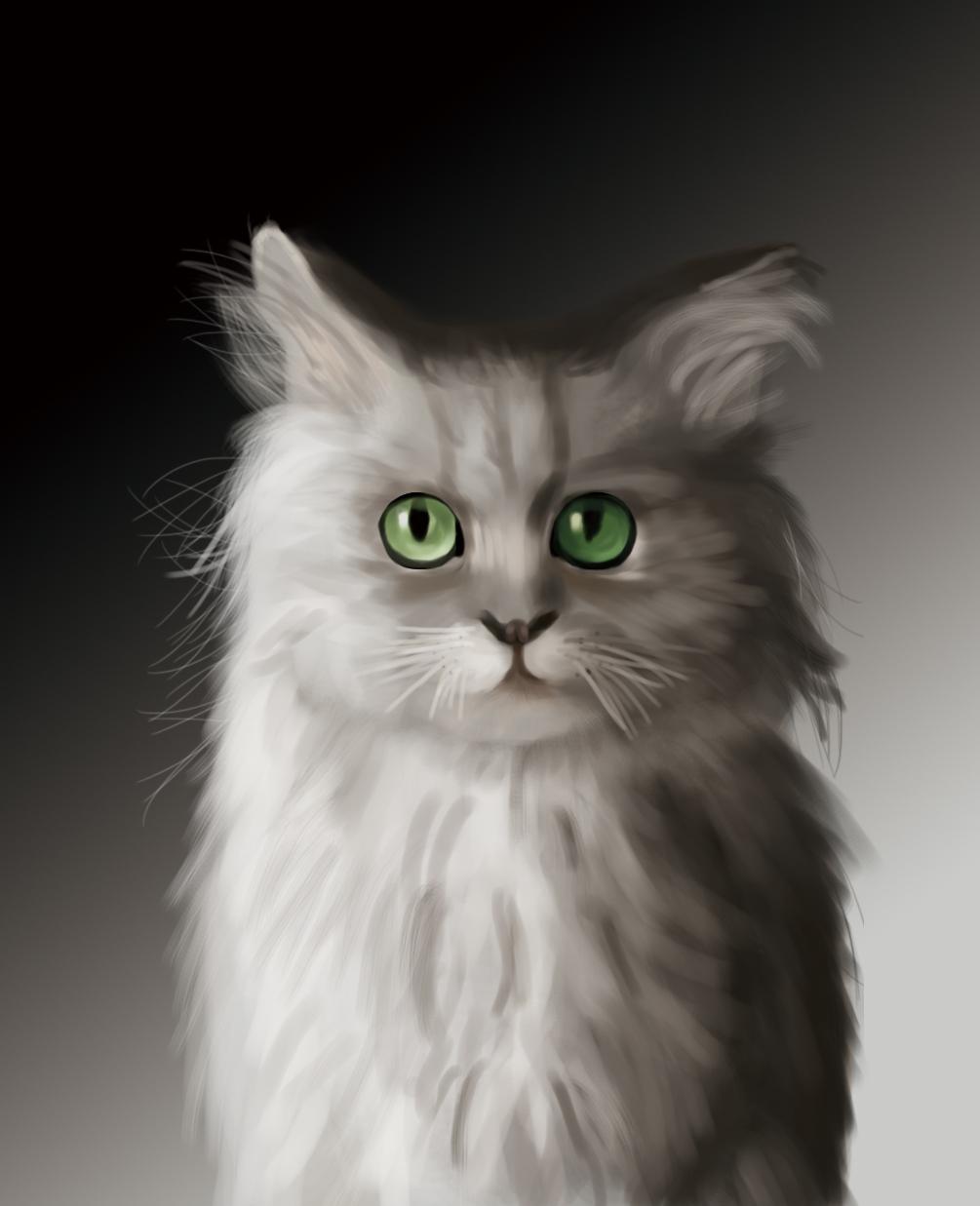 数位板手绘临摹猫