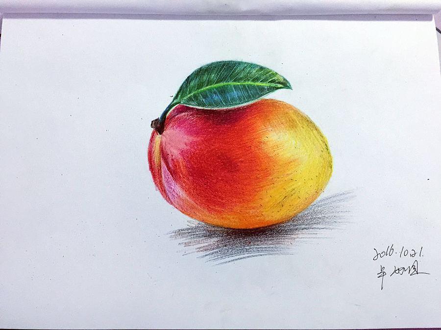 手绘水果 火龙果 芒果 彩铅绘