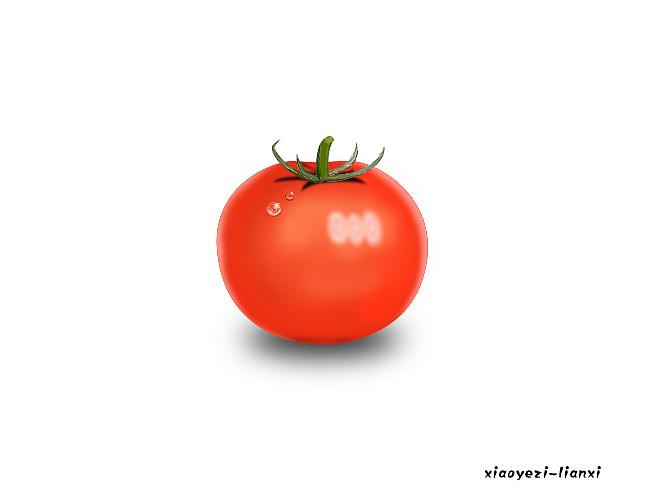 手绘练习--西红柿