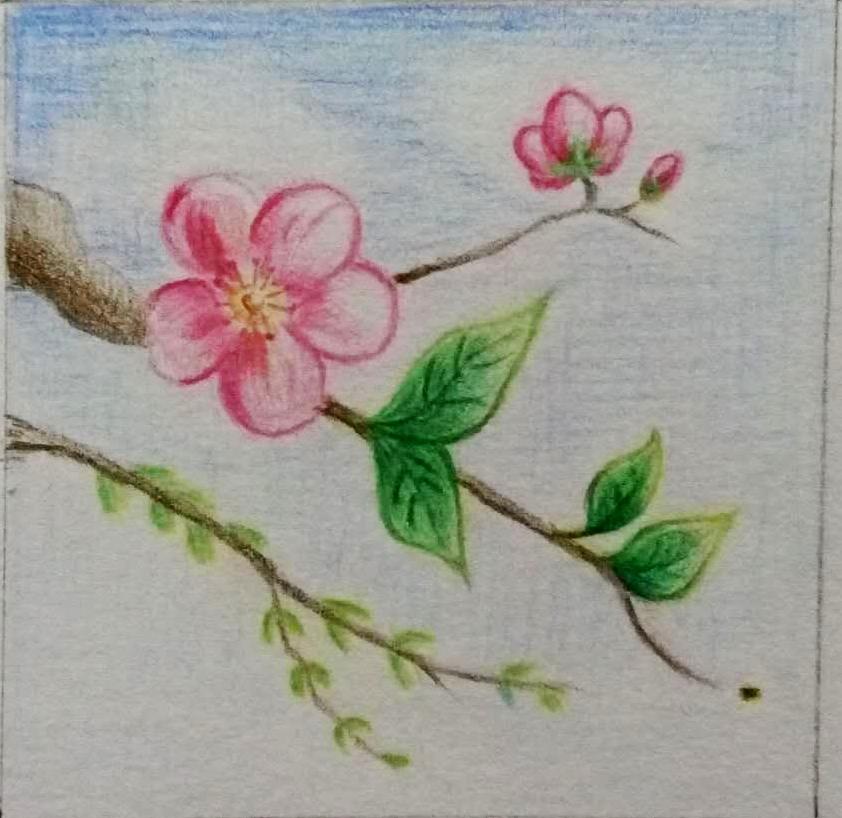 马克笔手绘|绘画习作|插画|记忆是素描