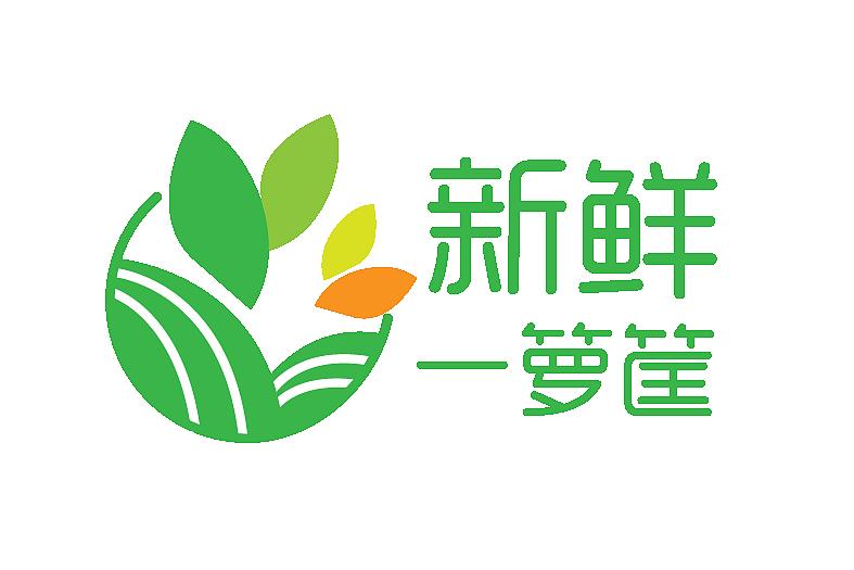 logo设计店名服务类商铺类三优服务产品图片