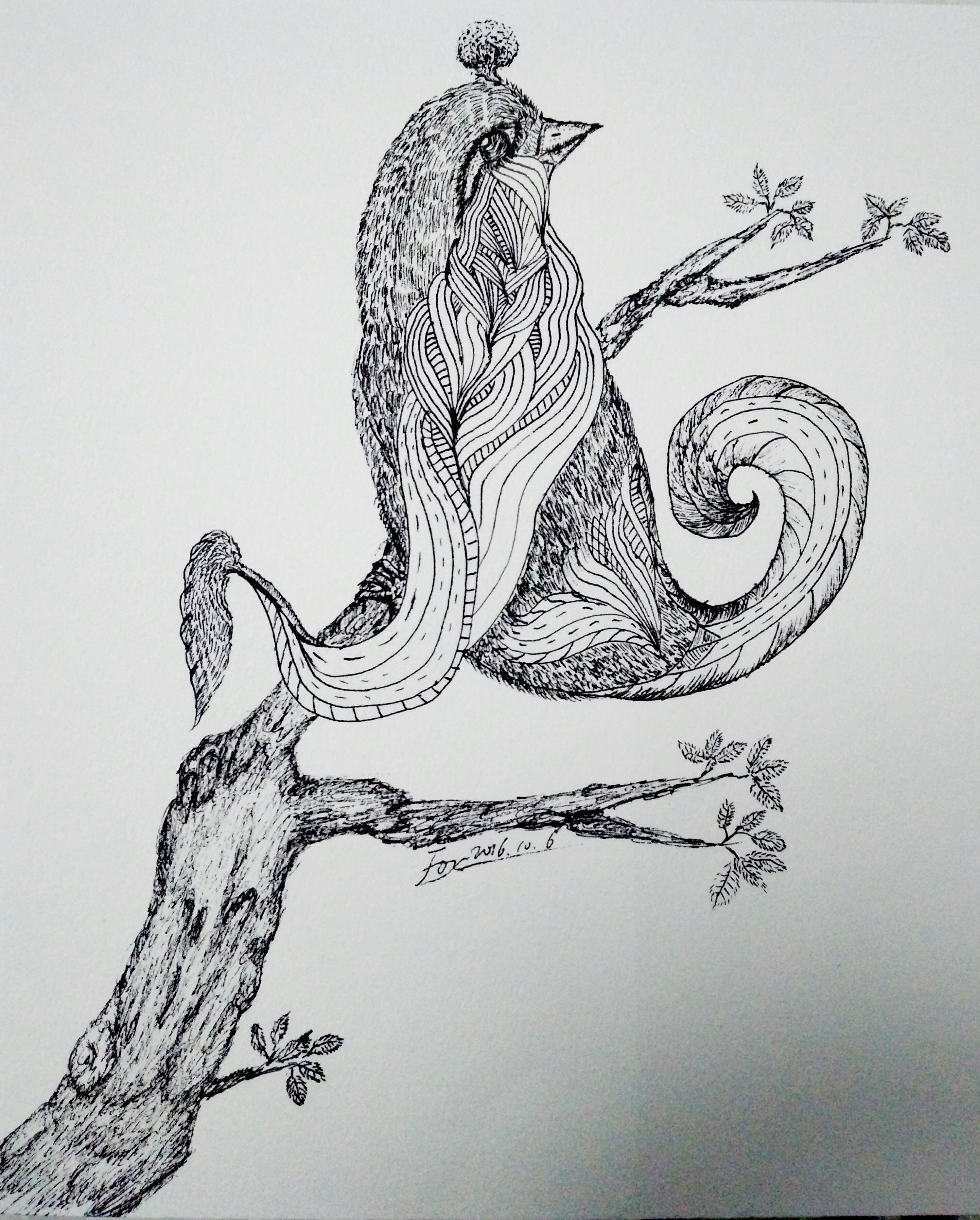 简笔画 手绘 素描 线稿 2996_3728 竖版 竖屏