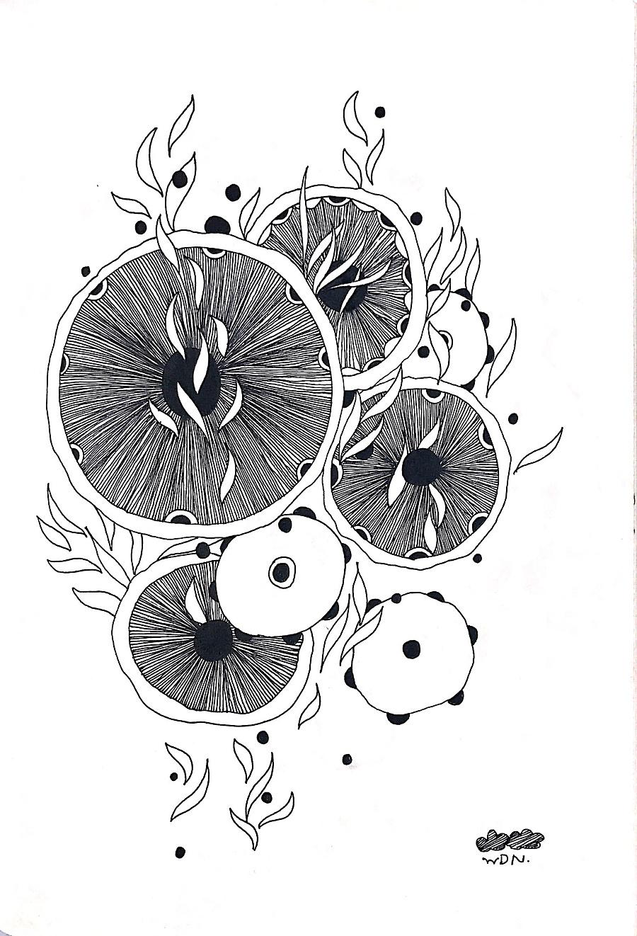 禅绕画·线描装饰画·手绘·插画 插画习作 插画 素匠