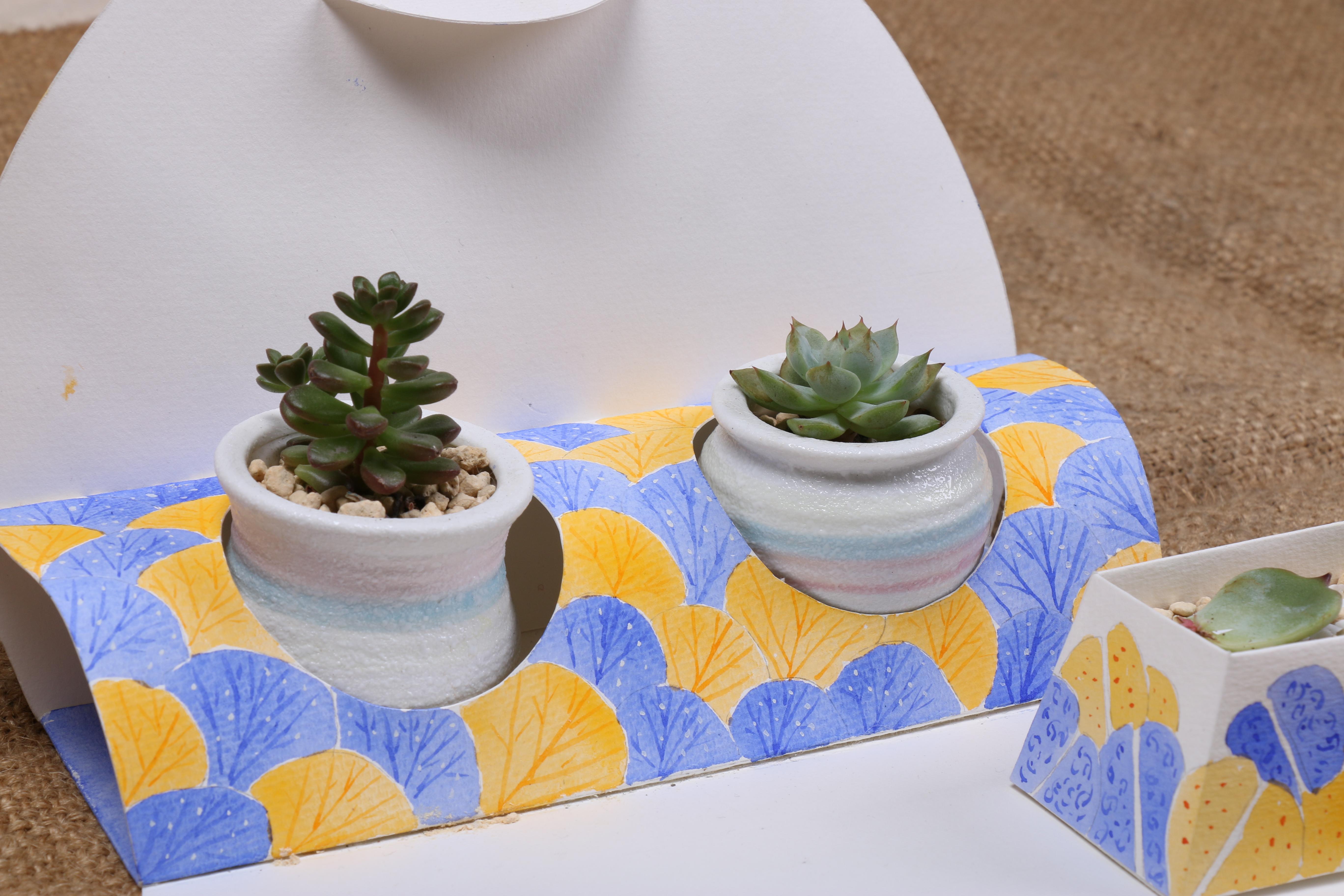 纯手绘多肉植物包装 平面 包装 prince叶 - 原创作品