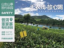 山生山事有机云南绿茶淘宝店首页设计|茶叶首页