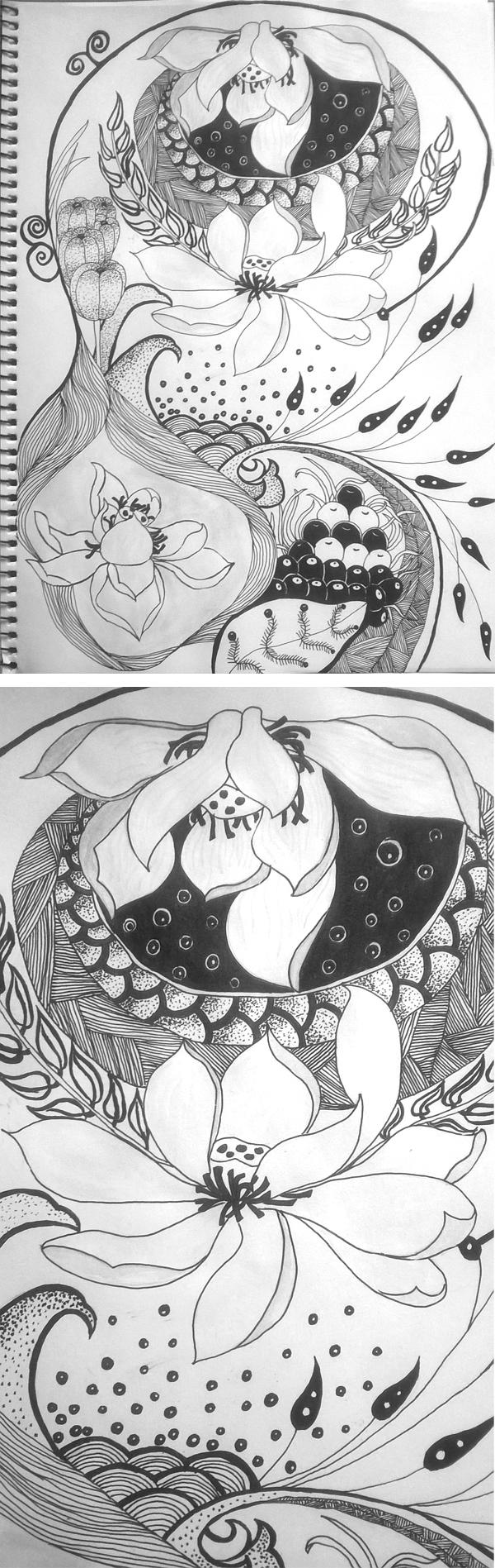 手绘线条练习|绘画习作|插画|花开在冬
