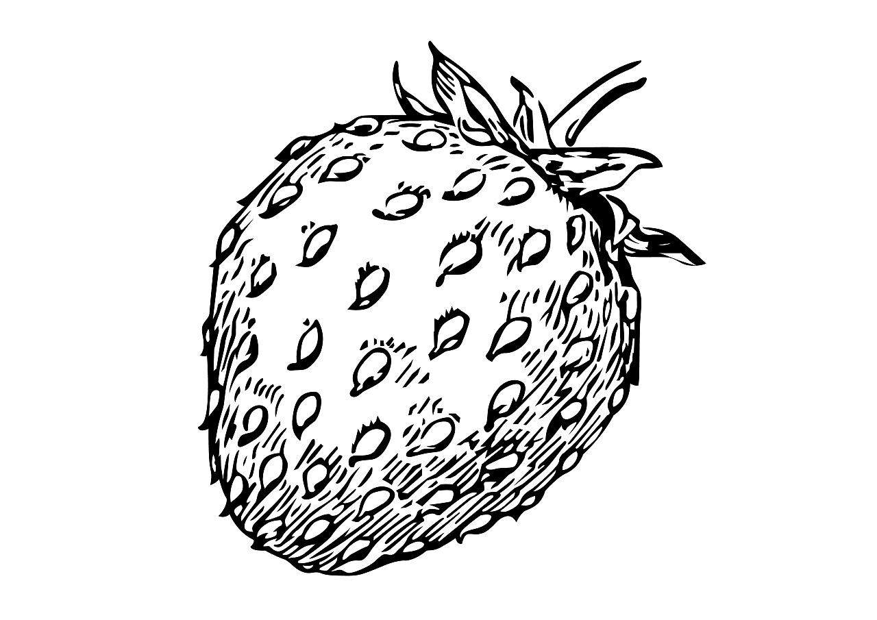 ai手绘水果