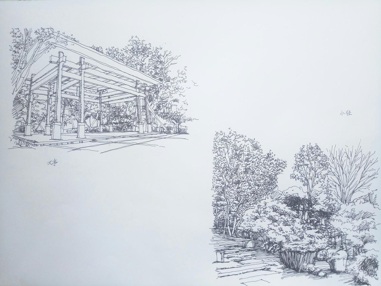 室外公园手绘线稿