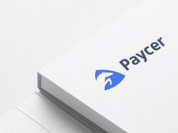 BRAND DESIGN— Paycer