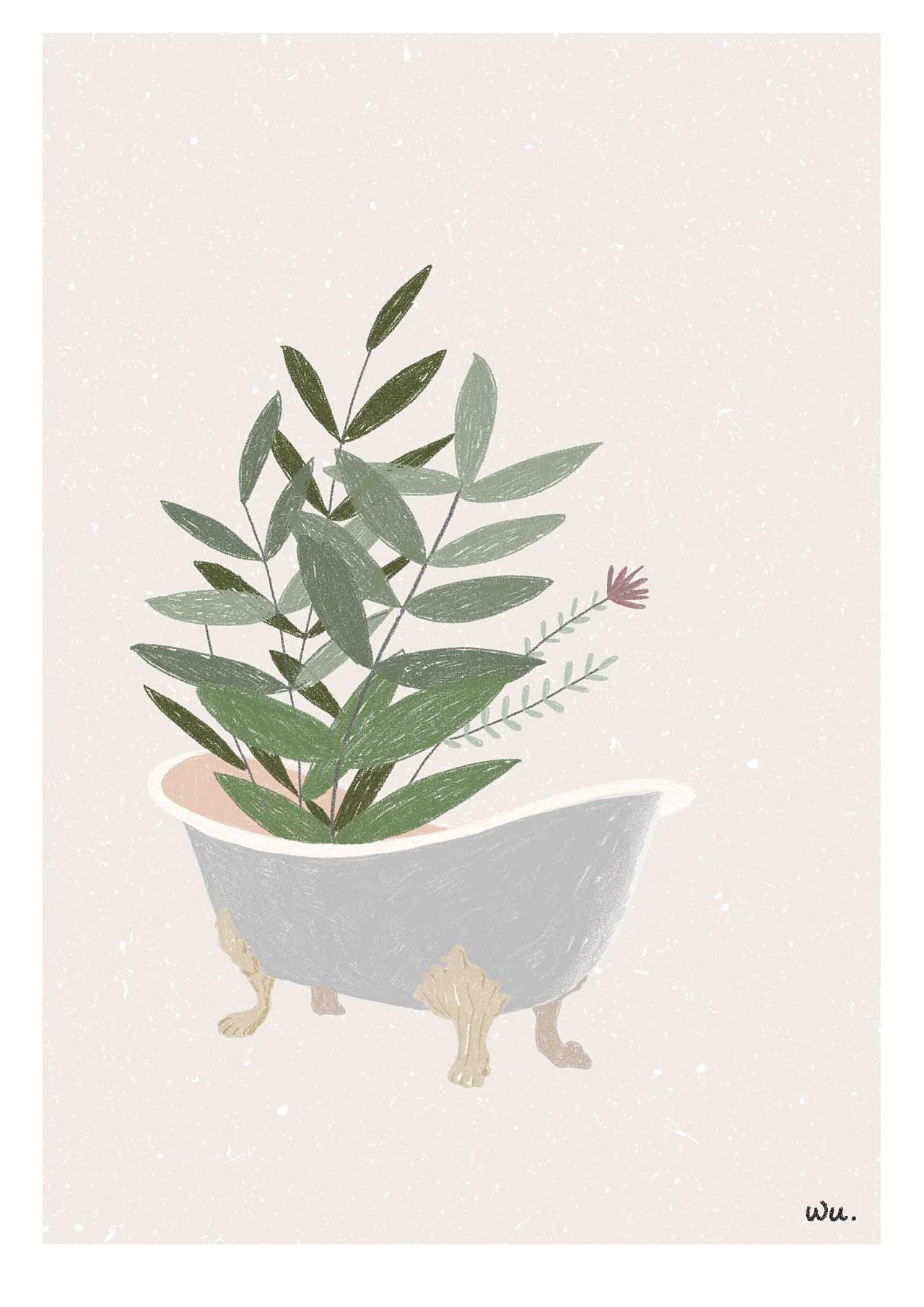 植物手绘平面图 彩铅