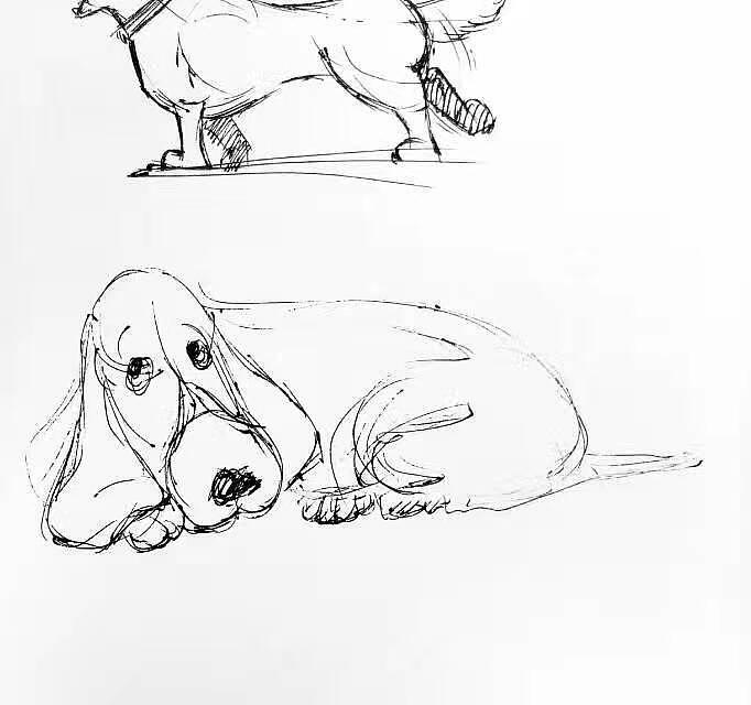 手绘卡通狗狗练习