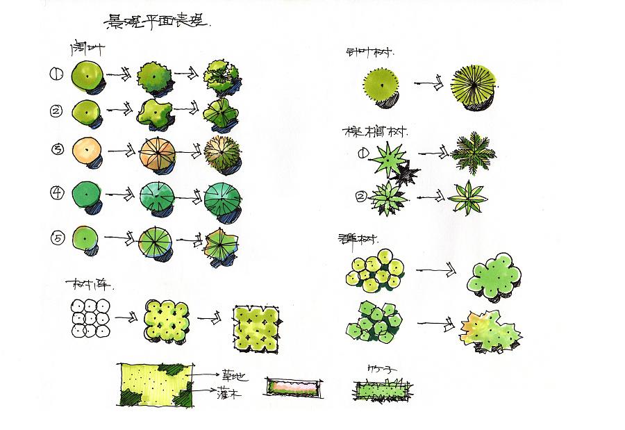手绘植物,水景,石头,人物