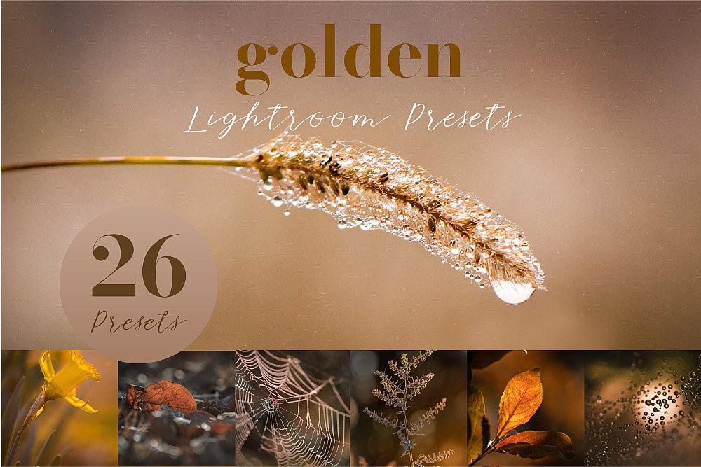 【P424】微距摄影风光金色调预设golden lightroom presets