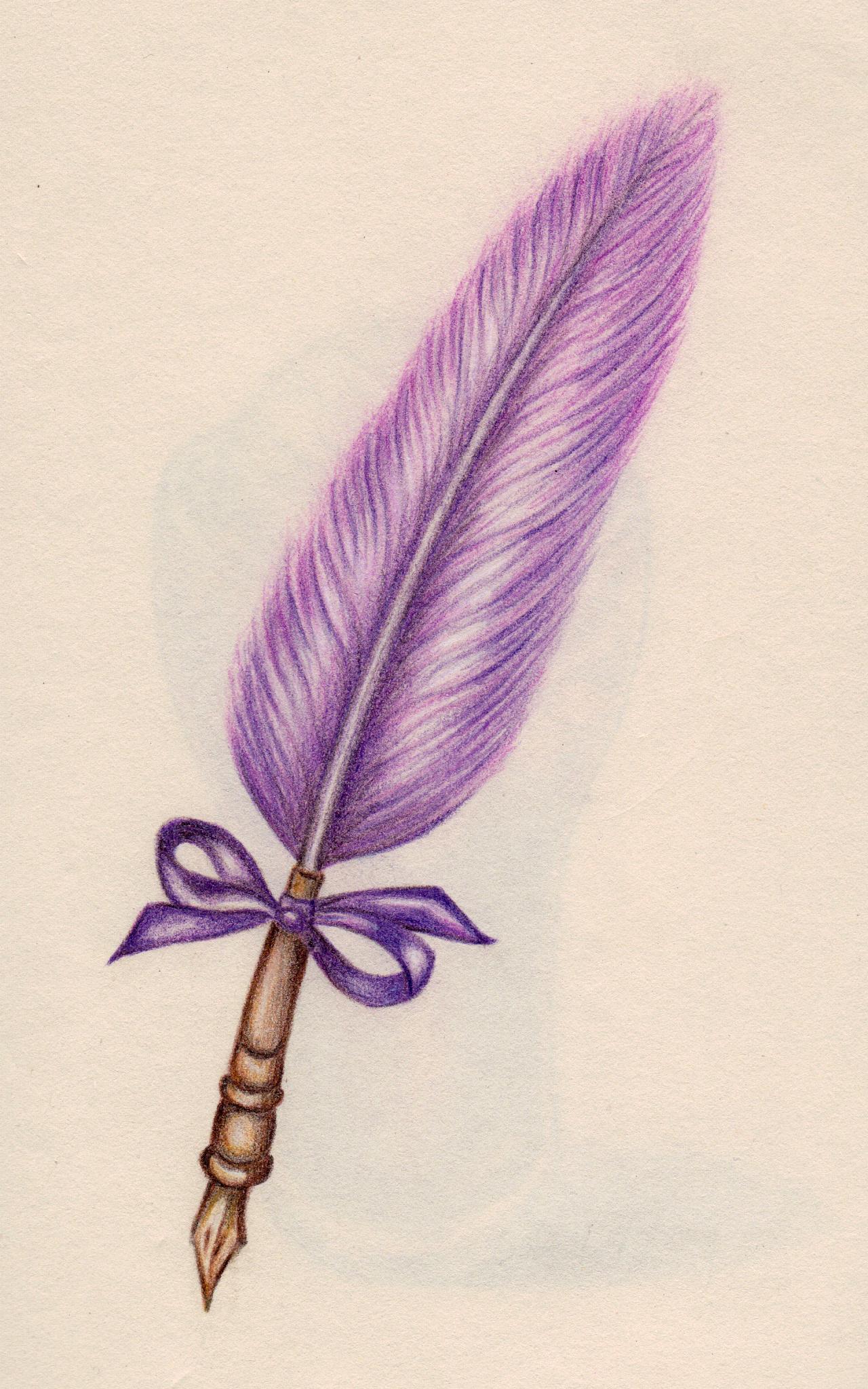手绘彩铅--羽毛笔