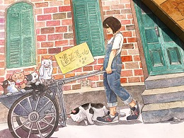 《猫咪遣返机地》