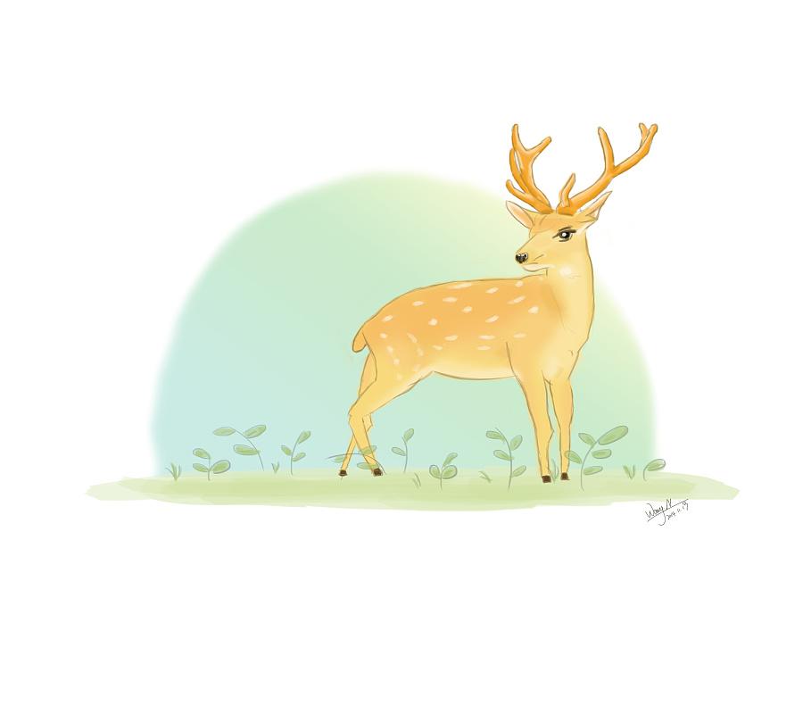 动物乐园 鹿|绘画习作|插画|牛奶哦