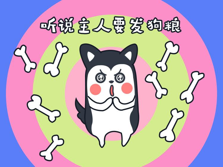 王哈哈-表情包制作教程图片