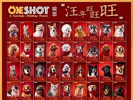 狗年过去一半了,刚想起来我们在年初拍的百狗拜年图