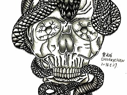 骷髅蛇 装饰图案(临摹,再进行更改)