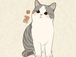 987天的画猫纪录,画猫第三季300天。
