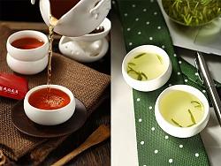 红茶绿茶天府龙芽拍摄