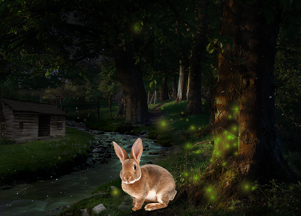 【森林里的兔子和小木屋】[修图/后期]
