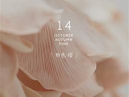 粉の褶皱 | 粉色平菇的快乐