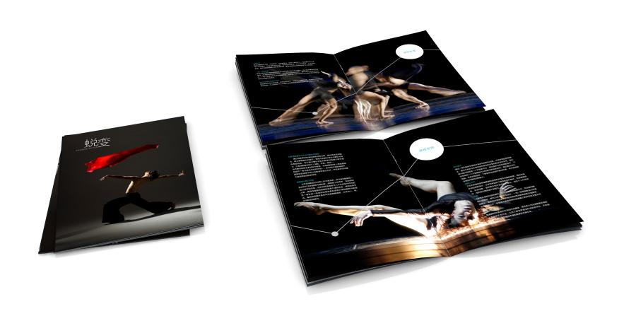 长沙某艺术培训学校招生课程设置画册设计|书