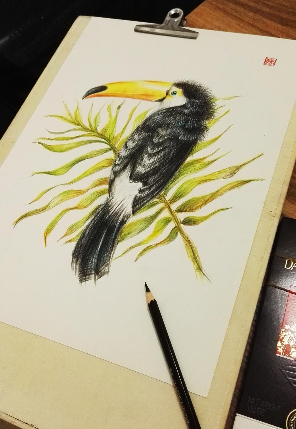 大嘴鸟花鸟彩铅手绘实木画框家居装饰画
